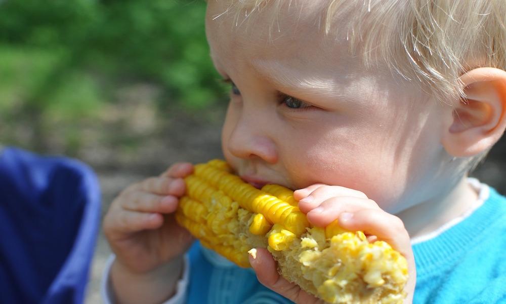 los niños comen gratis verano